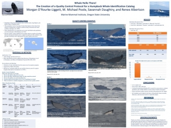Poster 21 - Whale, Hello There! The creation of a quality control protocol for a Humpback Whale photo-identification catalog